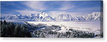 Evergreen Trees On A Snow Covered Canvas Print by Panoramic Images