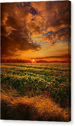 Picnic Table Canvas Print - Every Step Of The Way by Phil Koch