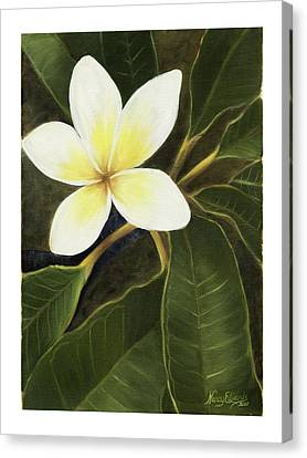 Everywhere In Hawaii Canvas Print by Nancy Edwards