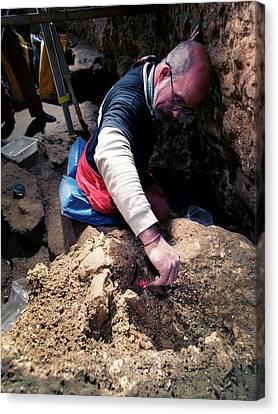 Excavations At Sima De Los Huesos Canvas Print by Javier Trueba/msf