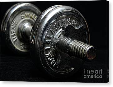 Schwarzenegger Canvas Print - Exercise  Vintage Chrome Weights by Paul Ward