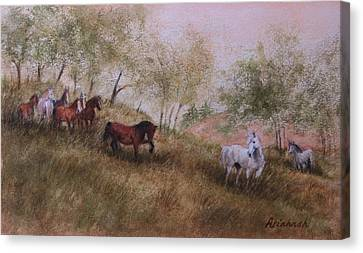 Exiled From The Herd Canvas Print by Ursula Brozovich