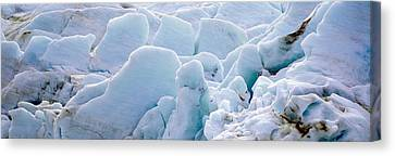 Exit Glacier At Harding Ice Field Canvas Print by Panoramic Images