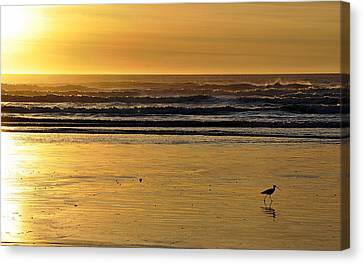 Canvas Print featuring the photograph Exit Stage Right by AJ  Schibig
