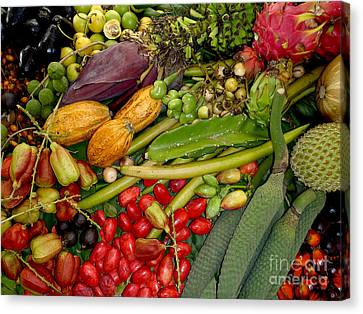 Mango Canvas Print - Exotic Fruits by Carey Chen