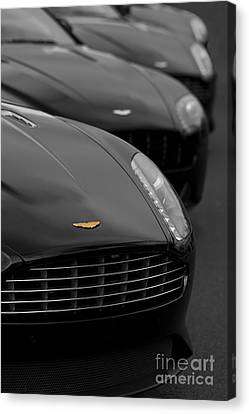 Exotic Lineup Canvas Print
