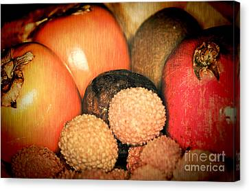 Exotique 1 Canvas Print by Steve Purnell