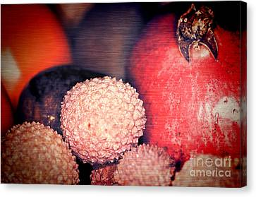 Exotique 2 Canvas Print by Steve Purnell