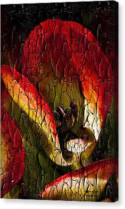 Experience Canvas Print