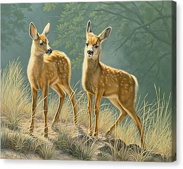 Mule Deer Canvas Print - Explorers by Paul Krapf