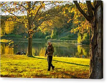Maple Season Canvas Print - Exploring Autumn Light by Steve Harrington