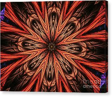 Explosion Of A Carrot  Canvas Print by Fania Simon