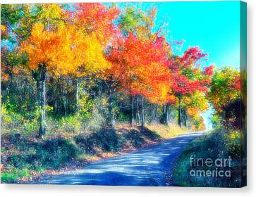 Explosion Of Color - Blue Ridge Mountains I Canvas Print by Dan Carmichael