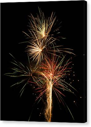 Explosion Canvas Print by Shirley Tinkham