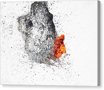 Explosive Water Balloon Canvas Print by Jay Harrison
