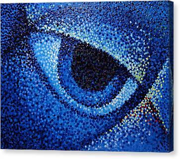 Eye  Canvas Print