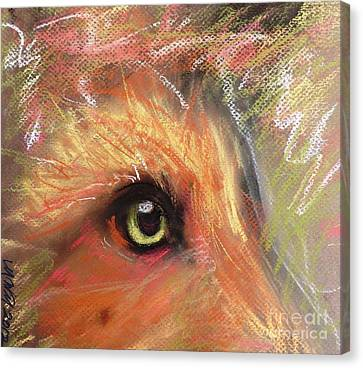 Eye Of Fox Canvas Print by Michelle Wolff