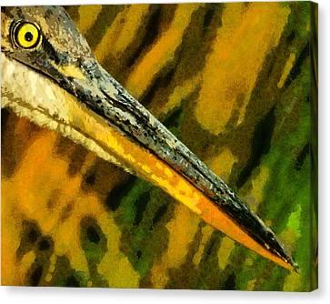 Eye Of The Heron Canvas Print