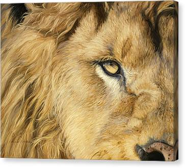 Eye Of The Lion Canvas Print by Lucie Bilodeau