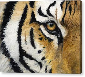 Eye Of The Tiger Canvas Print by Lucie Bilodeau