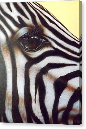 Eye Of The Zebra Canvas Print