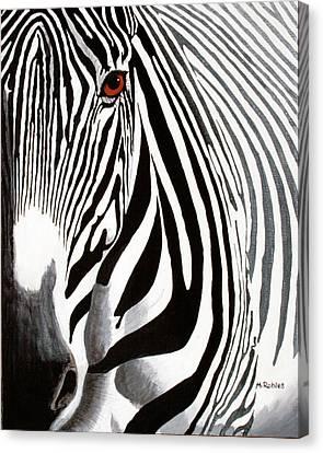 Eye Of The Zebra Canvas Print