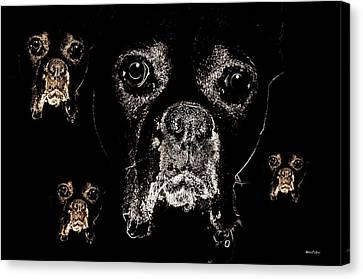 Eyes In The Dark Canvas Print by Maria Urso