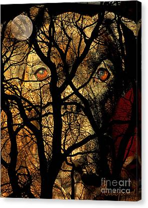 Eyes In The Sky Canvas Print by Judy Wood