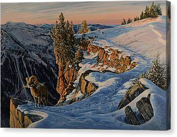 Canvas Print featuring the painting Eyes Of The Canyon by Steve Spencer