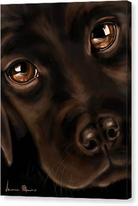 Eyes Canvas Print by Veronica Minozzi