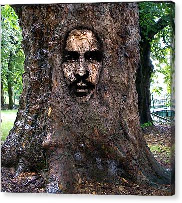 Face In A Tree Canvas Print by Mary M Collins