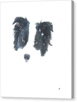 Canvas Print featuring the digital art Face In The Snow by Aliceann Carlton