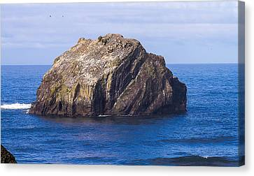 Canvas Print featuring the tapestry - textile Face Rock by Dennis Bucklin