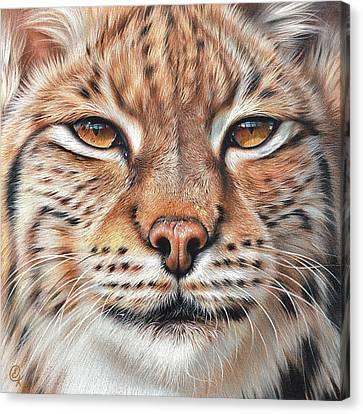 faces of the Wild - Lynx Canvas Print by Elena Kolotusha