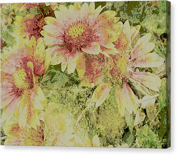 Faded Love Abstract Floral Art Canvas Print by Ann Powell