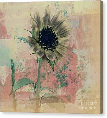 Faded Love Canvas Print by Janice Westerberg