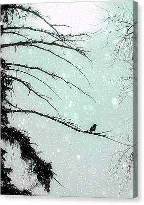 Abstract Faded Winter Canvas Print