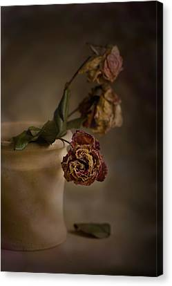 Canvas Print featuring the photograph Fading Away by Trevor Chriss