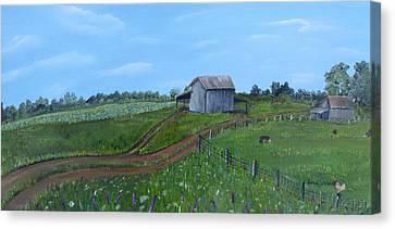 Fading Tobacco Barns Canvas Print