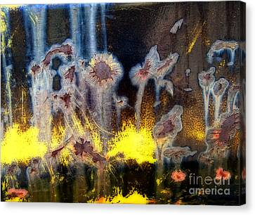 Fae And Fireworks Abstract Canvas Print
