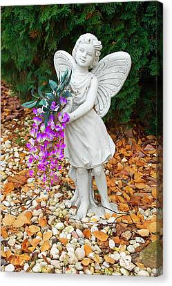 Canvas Print featuring the photograph Fairy by Aimee L Maher Photography and Art Visit ALMGallerydotcom