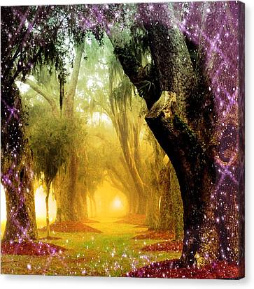 Fairy Forest Canvas Print by Barbara Northrup