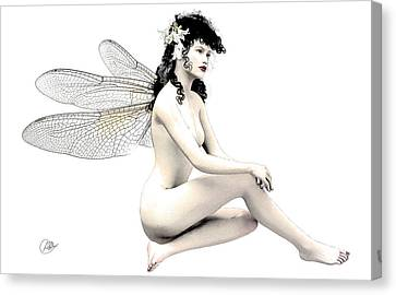 Fairy Fortune  Canvas Print by Quim Abella