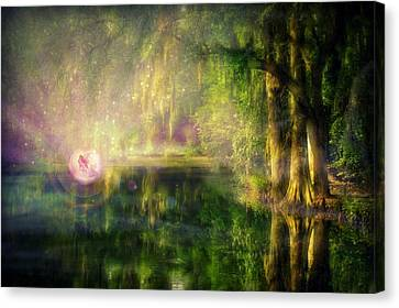 Fairy In Pink Bubble In Serenity Forest Canvas Print
