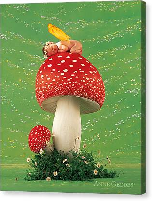 Fairy On Toadstool Canvas Print by Anne Geddes