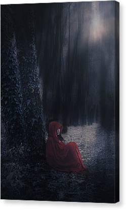 Fairy Tale Canvas Print by Joana Kruse