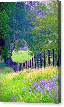 Fairy Tale Meadow With Lupines Canvas Print by ARTography by Pamela Smale Williams