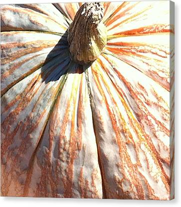 Canvas Print featuring the photograph Fairy Tale Pumpkin by Denyse Duhaime