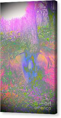 Canvas Print featuring the photograph Fairy Tree by Karen Newell