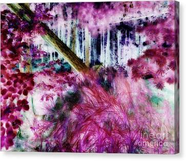Canvas Print featuring the photograph Fairy Tropicolor by Jamie Lynn